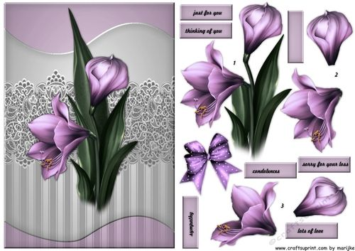 Sympathy Amaryllis by Marijke Kok Beautiful sympathy design with gorgeous amarillys.: Beautiful sympathy design with gorgeous amarillys.