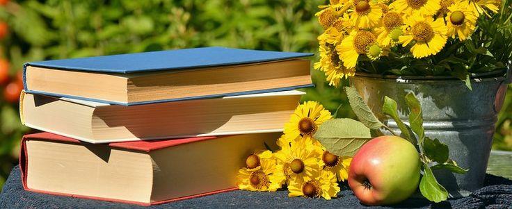 Books, Read, Garden, Sun Brews