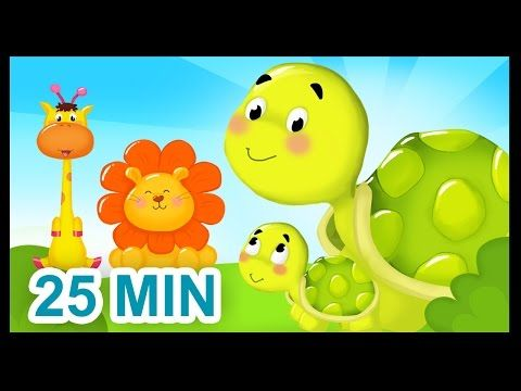 La famille Tortue - 25 min - Comptines sur les animaux pour les bébés - YouTube