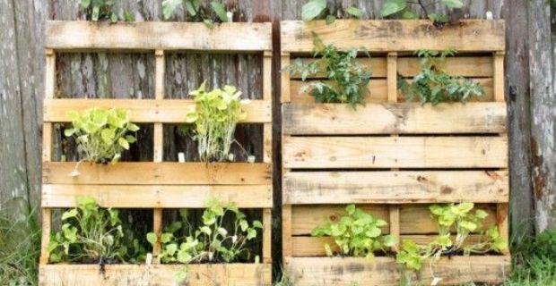 palets para jardin