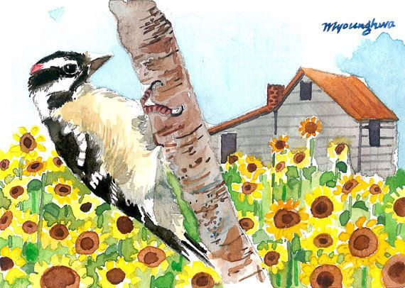 Aceo Limited Edition 5 25 Woodpecker In Sunflower By Annalee377 Original Watercolor Painting Original Watercolors Art