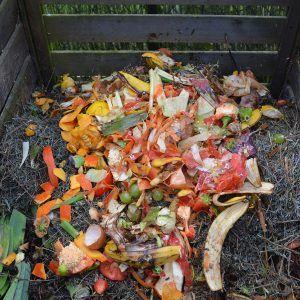 Le compostage des épluchures permet de diminuer le volume des déchets