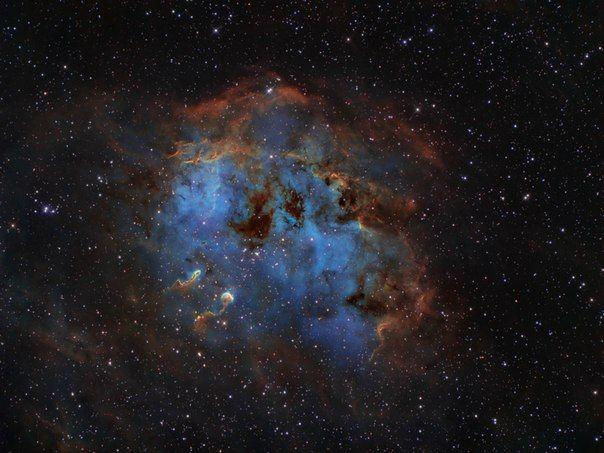 Туманность IC 410 и скопление NGC 1893 / Astro Analytics