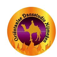 Kinderfeestjes   Oriëntaalse Dansstudio Nijmegen   Buikdansen Nijmegen, buikdanseres Nijmegen, buikdansworkshop kinderfeestjes