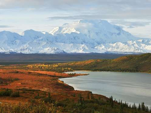 Mount McKinley sits in Denali National Park, which comprises a staggering six million acres of Alask... - kongxinzhu / iStock