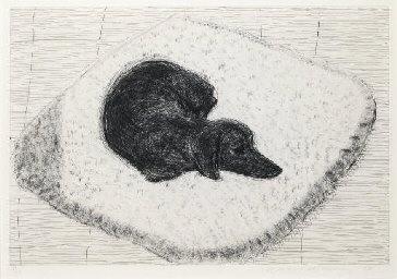 David Hockney's Dog Etching No. 10