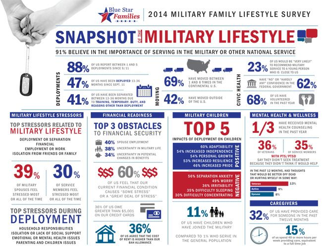 2014 Military Family Lifestyle Survey Results Infographic