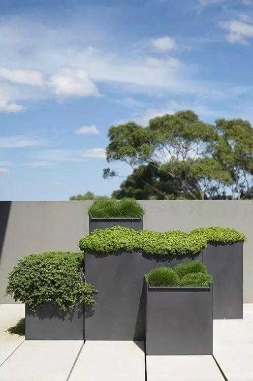 Moderne plantenbakken