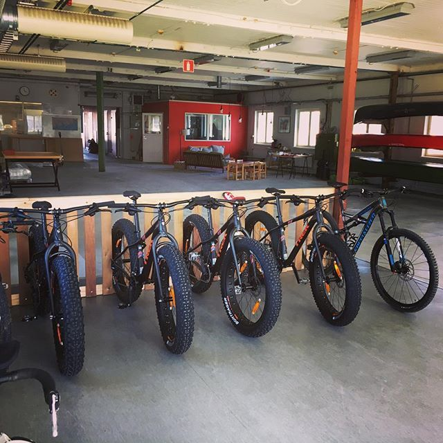 Our rental #fatbikes lined up waiting for riders with right wibes to test them out at perfect #trails #stromforsoutdoor