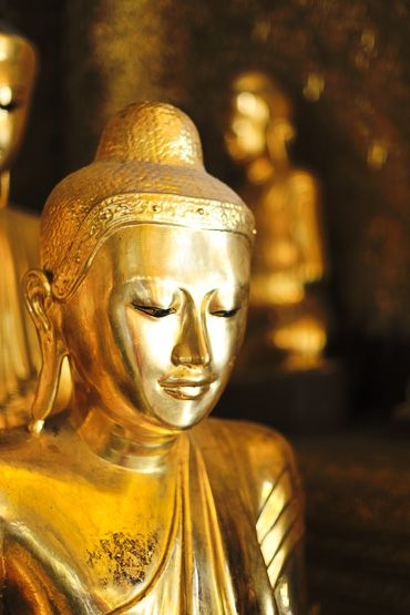 vienna buddhist singles Source for information on buddhist  it can therefore be said that the history of the study of buddhism, understood as a single tradition that began  and vienna.