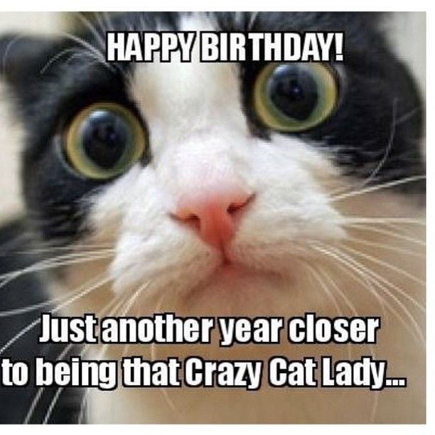 Pin On Dank Birthday Memes