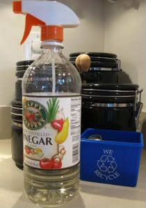 A spray bottle top fits on a bottle of vinegar for cleaning. Also, spray vinegar on an area that has a bad smell (maybe where a bag of potatoes rotted in a cabinet) let the vinegar sit a few hrs, then wipe down and smell should be gone!