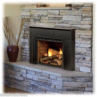 143 best Fireplace Inserts images on Pinterest   Gas ...