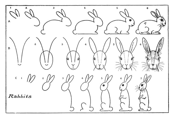 Vintage Kids Printable - Draw some Bunnies - The Graphics Fairy