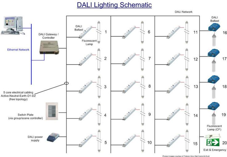 Automatedbuildings Com Article Dali Is Here Here To Stay Dali Lighting Diagram Diagram