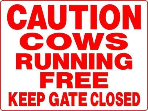 COWS AND BULLS ALUMINUM SIGNS D3114