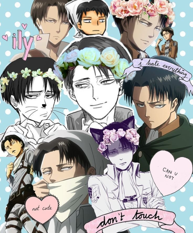 Levi X Reader One-shots - Plans for thank you gift | Attack on titan