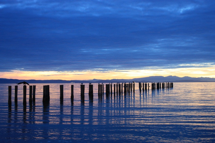 Many moments of beauty here. Point Roberts, WA. Went ffshing for Salmon while here for the White Family reunion..