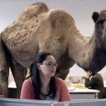 """GEICO Happier than a Camel on Wednesday """"Hump Day"""" Commercial"""