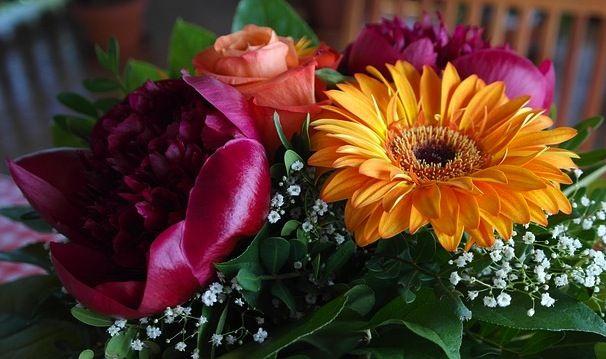 Come conservare i fiori recisi: tutte i consigli per far durare più a lungo i…