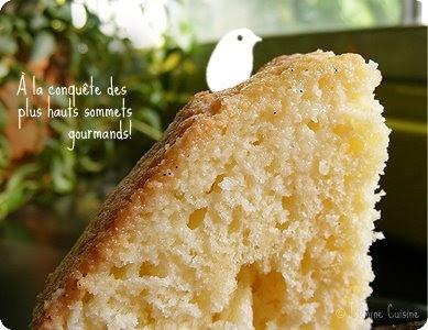 Pastel de tres Leches - Gâteau aux trois laits. Recette testée ce week-end. Je la conseille, elle est parfaite.