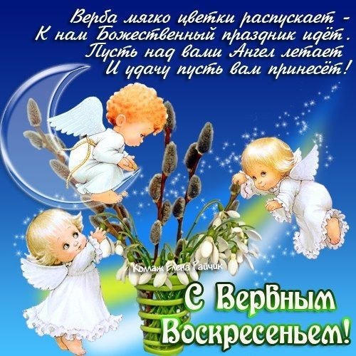 Прикольные поздравления С Днем Рождения | Бот