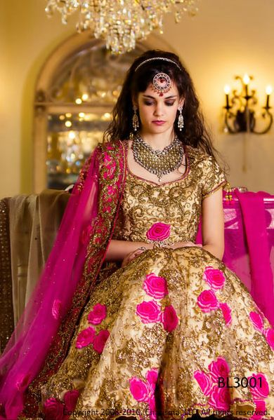 36 Best Ideas About North Indian Bride On Pinterest