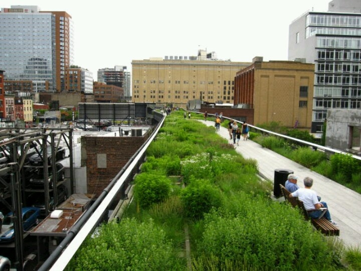 23 best images about High Line Garden New York on