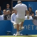 David Nalbandian is being investigated on assault charges after kicking a sign into an official...