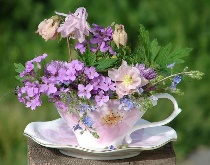 День, картинки с надписью чудесного дня с цветами