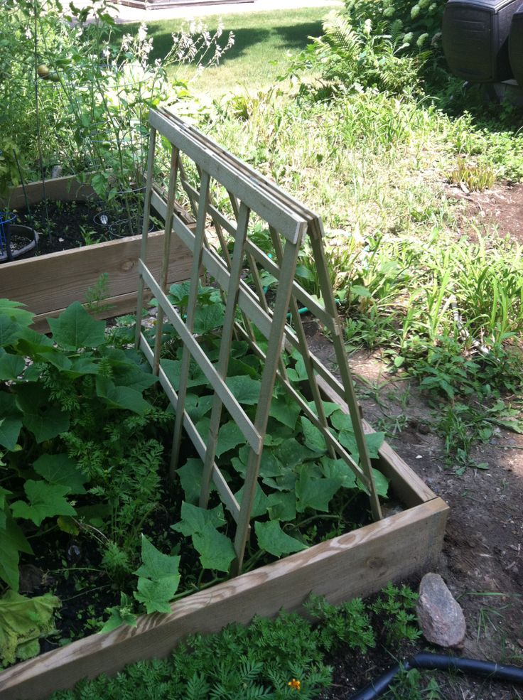 To build your own 3ft x 3 ft folding trellis you will need the following: 20(1 1/2″x 1/4″x 3′ lattice boards) Available in 6ft lengths at Lowes. Just cut in half! 30(#…