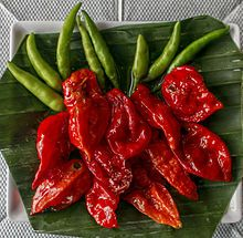 """Chili, with capsicum, is used in Fancy Foot Pads. Wikipedia states: """"Capsaicin is considered a safe and effective topical analgesic agent in the management of arthritis pain, herpes zoster-related pain, diabetic neuropathy, mastectomy pain, and headaches."""""""