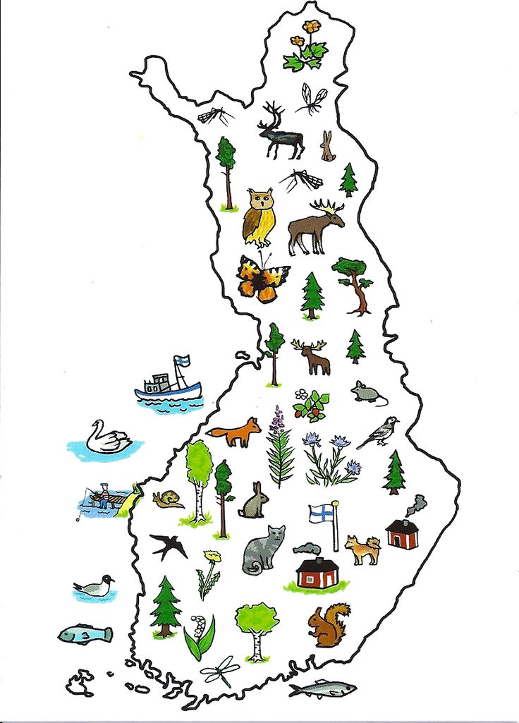 Animals in Finland