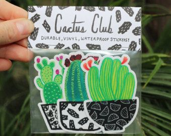 Succulent Decal Cactus Sticker Southwestern Decor by kaitywhales