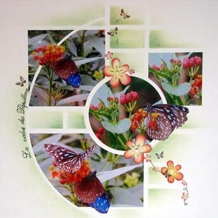 Concours La valse des papillons - Creavenue