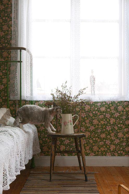 Fine Little Day: Hiro, the Swedish kitty I love through this wonderful blog…
