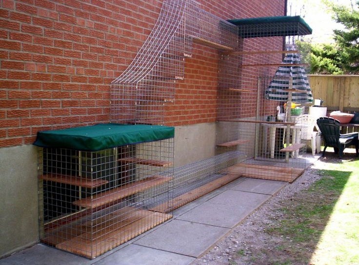 The Hideaway Kitty Kennel Enclosure Katten Cats Dog