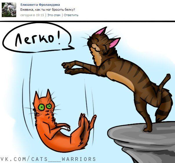 Фото картинки, смешные картинки коты воители с надписями