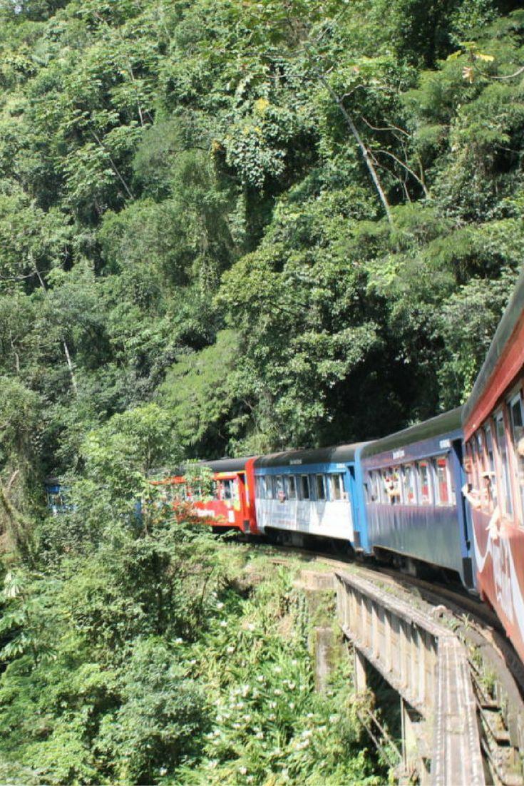 Passeio de trem de Curitiba a Morretes, pela Serra do Mar.