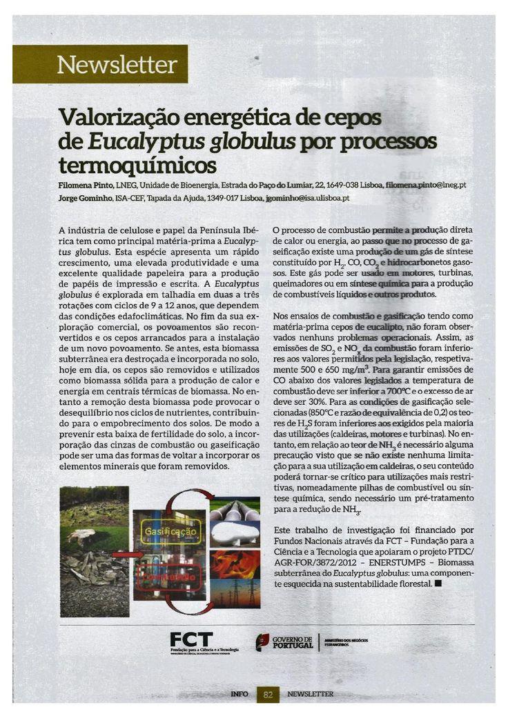 Artigo publicado na revista info@tecnicelpa com a participação de Jorge Gominho, Professor no ISA/CEF. Publicado na revista de Fevereiro de 2016