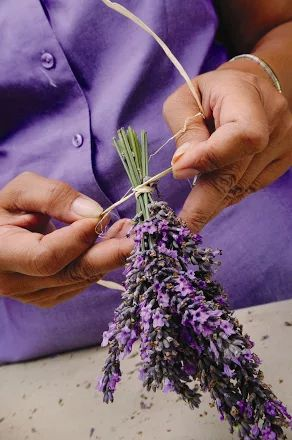 Fotoğraf: Step one of the lavender wreath craft project. PHOTO CREDIT: Ali'i Kula Lavender/The Maui Book of Lavender.