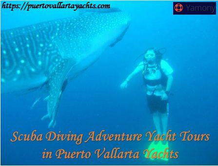 Scuba Diving Adventure Yacht Tours in Puerto Vallarta Yachts