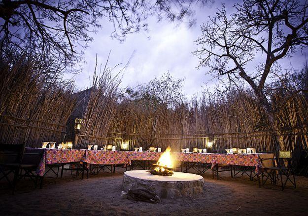 Sausage Tree Safari Camp het 'n wonderlike kuier-boma.