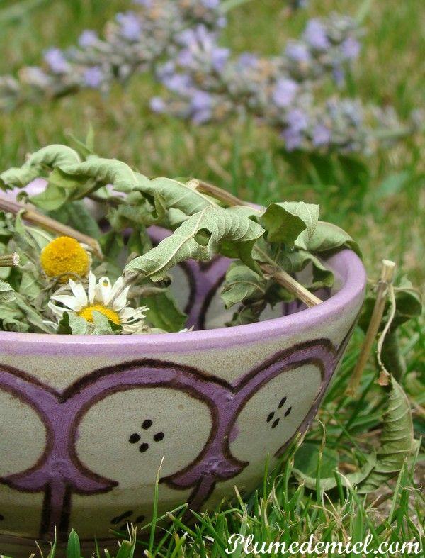 The 25 best citronnelle plante ideas on pinterest plante citronnelle cultiver de la menthe - Cultiver de la menthe ...