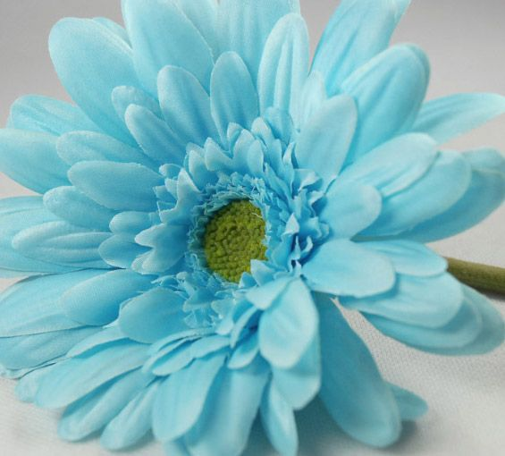 15.99 SALE PRICE! Adorn your home in spring-like ambiance with this luscious bunch. The Aqua Silk Gerbera Daisy Bouquet will bring a glamorous flair to its s...