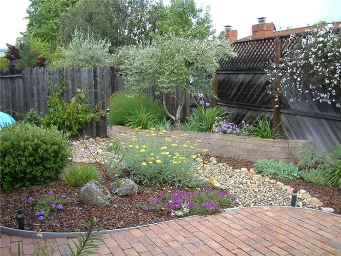 A lawnless garden with seasonal interest and plenty of patio space on