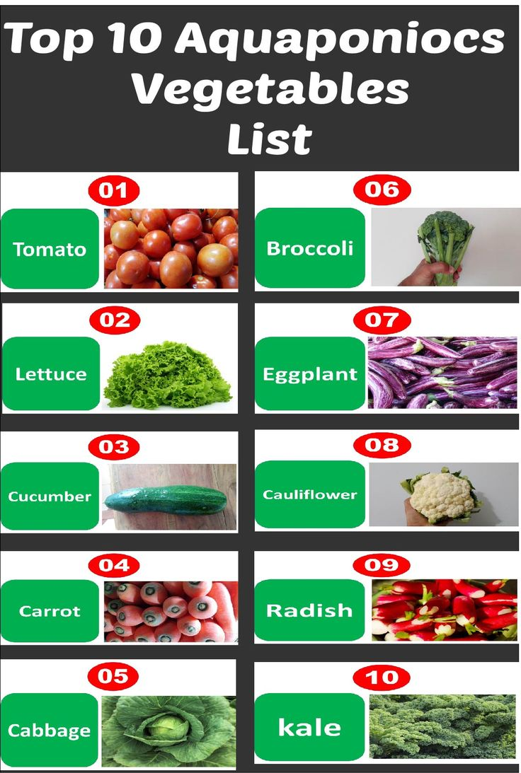 Top 10 aquaponics vegetables list every body should know