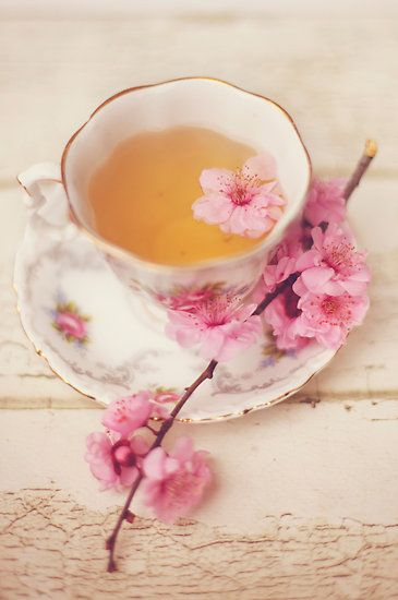 Vintage china and pink blossoms.