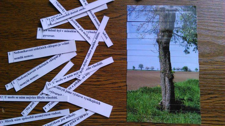 Práce s chybou - žák vybírá správně napsané věty, ty pak seřadí podle čísel, a pokud pracoval dobře, vyjde mu obrázek.