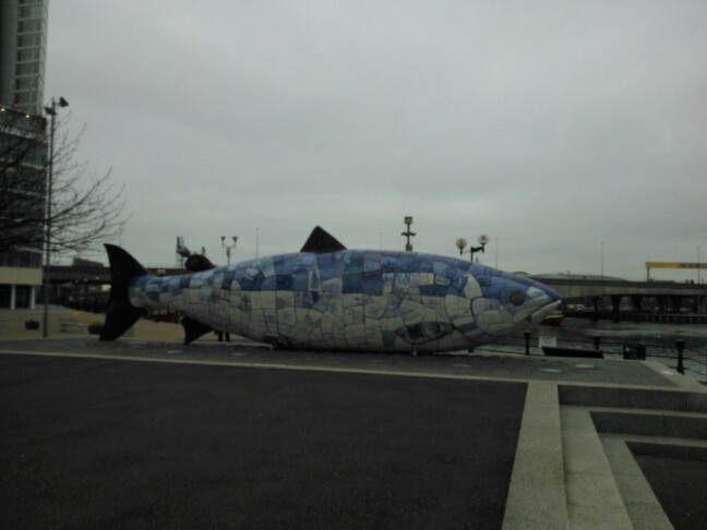 The imaginatively named Big Fish. Belfast